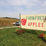 big apple orchard - open sign